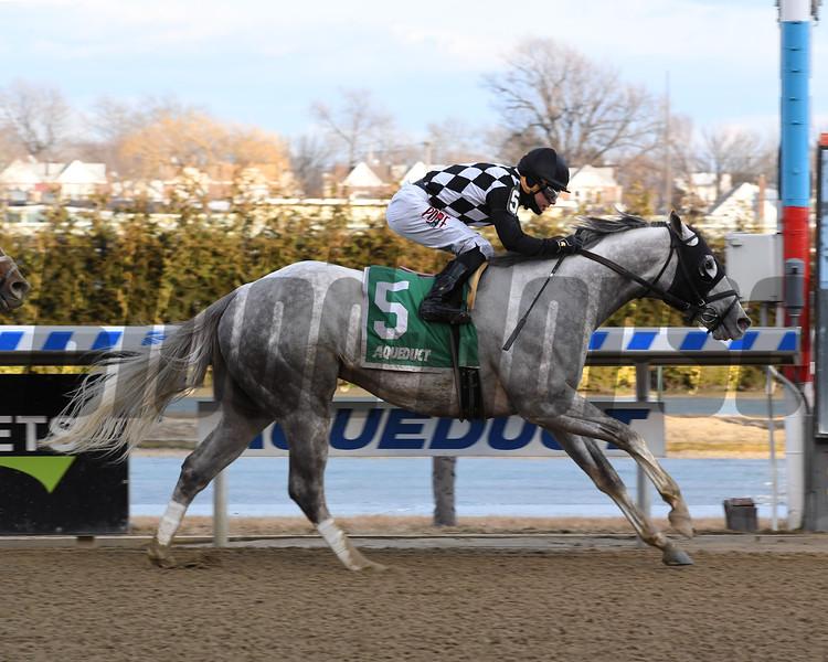 Bavaro wins 2019 Hollie Hughes Stakes at Aqueduct Racetrack. Coglianese Photos/Susuie Raisher
