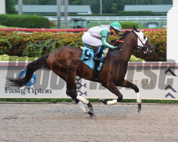 Genghis wins a maiden special weight Saturday, July 27, 2019 at Gulfstream Park. Photo: Coglianese Photos/Lauren King