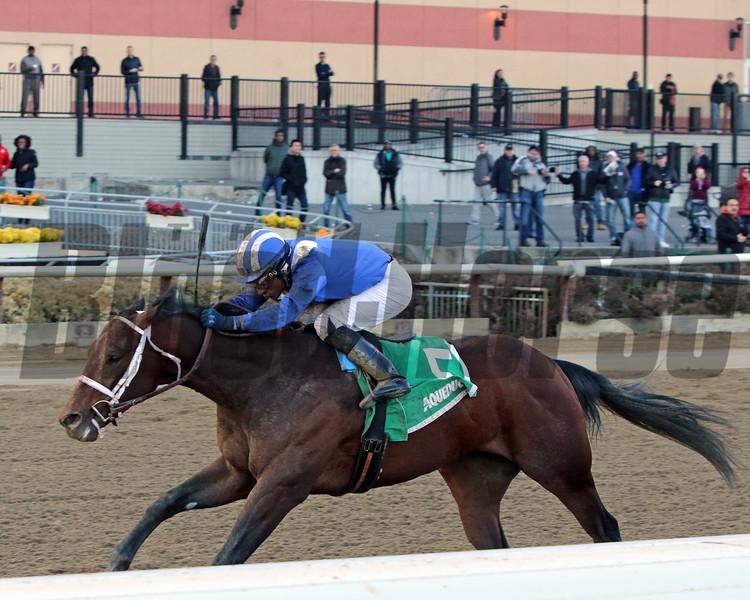 Haikal Rajiv Maragh win the Gotham Stakes at Aqueduct on March 9, 2019. Photo By: Chad B. Harmon