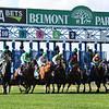 Racing scene at Belmont Park on Sunday, October 4, 2020. Photo: Coglianese Photos