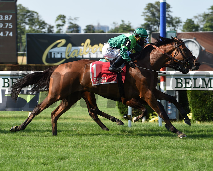 Fifty Five wins the 2020 Mount Vernon Stakes at Belmont Park<br /> Coglianese Photos