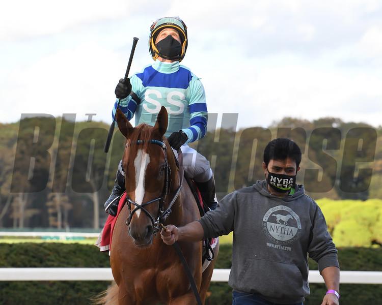 Get Smokin wins the Hill Prince Stakes Sunday, October 18, 2020 at Belmont Park. Photo: Coglianese Photos/Susie Raisher