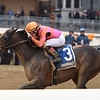 Max Player wins the 2020 Withers Stakes at Aqueduct   <br /> Coglianese Photos/Joe Labozzetta