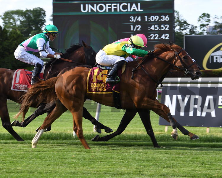 Therapist wins the 2020 First Defence Stakes at Belmont Park<br /> Coglianese Photos