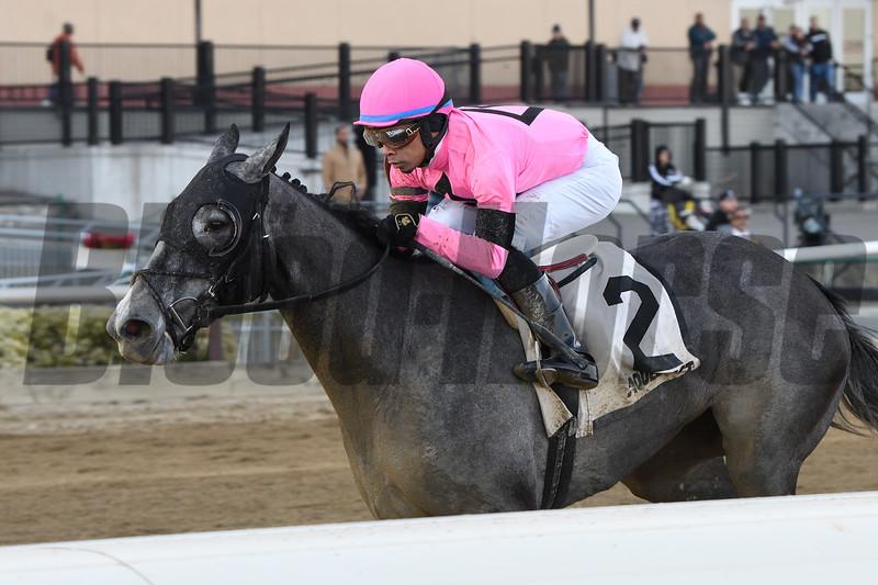 Ice Princess wins the 2020 Maddie May Stakes at Aqueduct Racetrack. Photo: Coglianese Photos/Elsa Lorieul