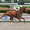 Edge of Fire - Maiden Win, Gulfstream Park, February 1, 2020<br /> Coglianese Phtoos
