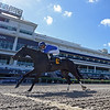 Boerne - ALW, Gulfstream Park, May 3, 2020<br /> Coglianese Photos/Ryan Thompson