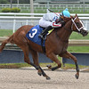 Beauty Queen - Maiden Win, Gulfstream Park, June 6, 2020<br /> First winner for Air Force Blue<br /> Coglianese Photos/Ryan Thompson