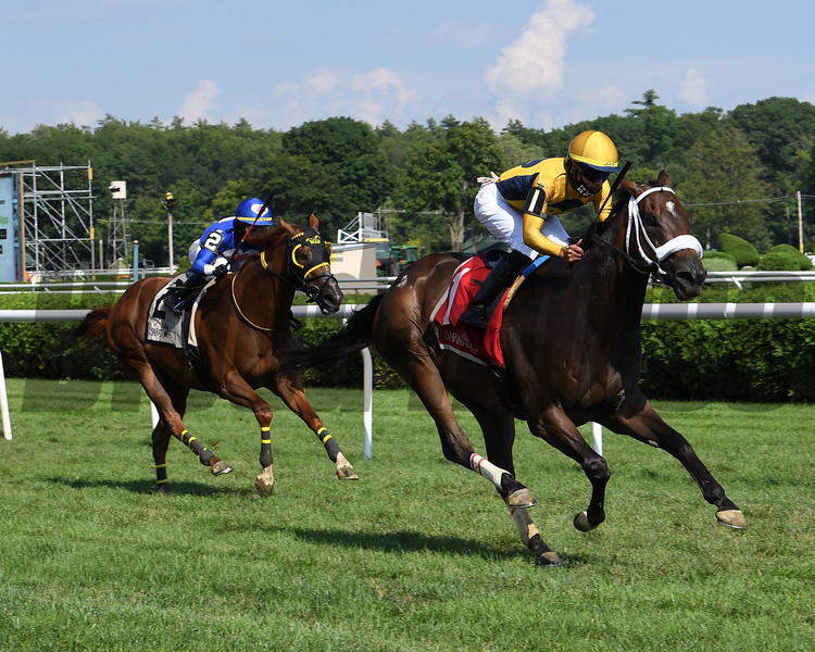American Sailor (#2 on left) with jockey Tyler Gaffalione wins the 2020 Troy at the Saratoga Race Course Saturday when #1 Imprimis was placed third after an inquiry<br /> Coglianese Photos/Susie Raisher