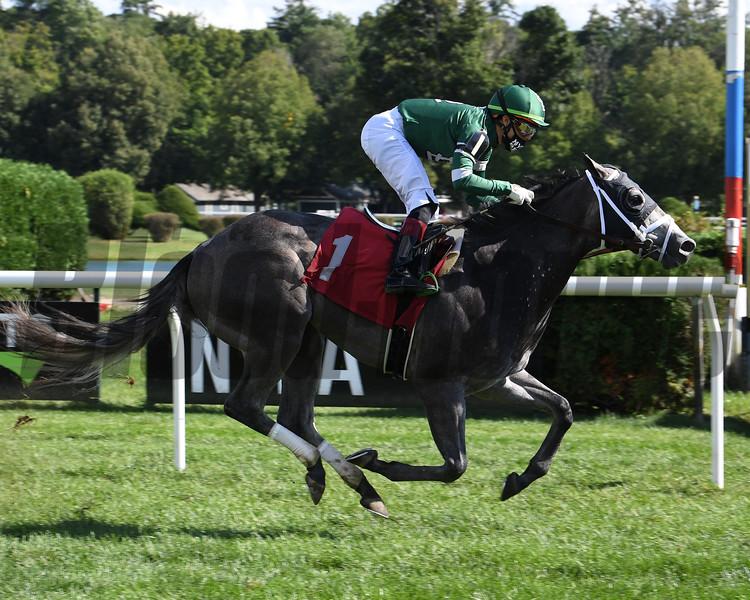 Restored Order - Maiden Win, Saratoga, September 5, 2020<br /> Coglianese Photos