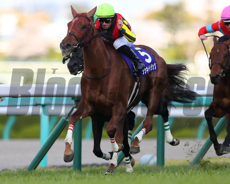 Lucky Lilac wins the 2020 Osaka Hai. Photo: Masakazu Takahashi