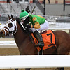 A Freud of Mama wins the 2020 Franklin Square Stakes at Aqueduct<br /> Coglianese Photos/Joe Labozzetta