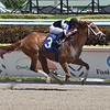 Not Now Rand - Maiden Win, Gulfstream Park, April 3, 2020<br /> Coglianese Photos/Lauren King