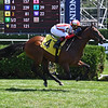 Public Sector - Maiden Win, Saratoga, August 15, 2020<br /> Coglianese Photos