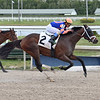Giocare - Maiden Win, Gulfstream Park, March 7, 2020<br /> Coglianese Photos/Lauren King