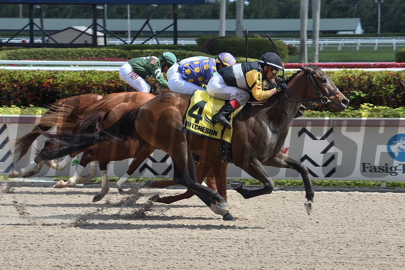 With Verve wins the 2020 Hutcheson Stakes at Gulfstream Park<br /> Coglianese Photos