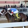 Pickin' Time wins the Nashua Stakes Sunday, November 8, 2020 at Aqueduct. Photo: Coglianese Photos/Chelsea Durand