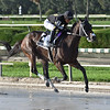 Tiz Possible Dear wins the 2020 Millions Distaff Stakes at Gulfstream Park West<br /> Coglianese Photos