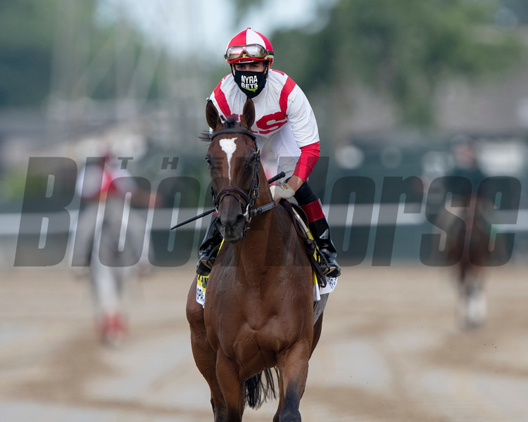 Newspaperofrecord wins the 2020 Just a Game Stakes at Belmont Park<br /> Coglianese Photos/Elsa Lorieul