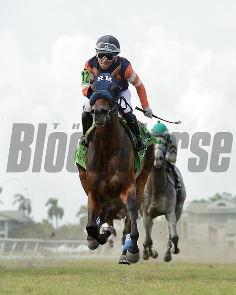 Maries Melody wins the 2020 Miss Gracie Stakes<br /> Coglianese Photos/Ryan Thompson