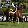 Channel Maker wins the 2020 Sword Dancer at Saratoga<br /> Coglianese Photos/Janet Garaguso