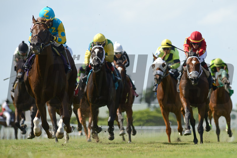 Salow - Maiden Win, Gulfstream Park, July 3, 2020<br /> Coglianese Photos/Ryan Thompson