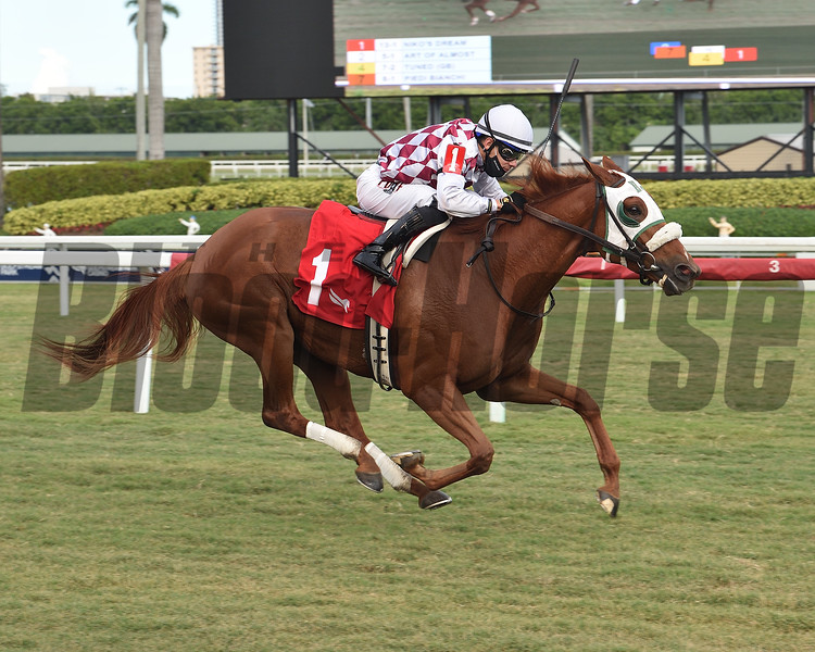 Niko's Dream wins the 2020 My Charmer Stakes at Gulfstream Park<br /> Coglianese Photos/Lauren King