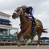 Tonalist's Shape wins the 2020 Forward Gal Stakes at Gulfstream Park  <br /> Coglianese Photos