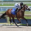 Princess Secret - Maiden Win, Gulfstream Park, May 7, 2020<br /> Coglianese Photos/Ryan Thompson