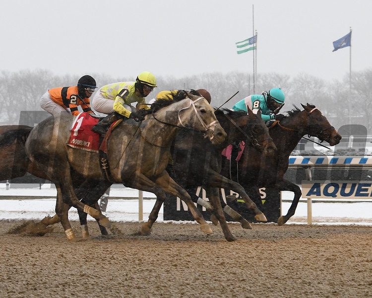 Mind Control wins the 2020 Toboggan Stakes at Aqueduct<br /> Coglianese Photos/Janet Garaguso