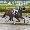 Poppy's Pride wins the 2020 Armed Forces Stakes at Gulfstream Park<br /> Coglianese Photos/Lauren King
