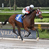 Quenane wins the 2020 Millions Classic Preview Stakes at Gulfstream Park West<br /> Coglianese Photos
