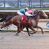 Princess Causeway wins an allowance optional claiming race Saturday, April 11, 2020 at Gulfstream Park. Photo: Coglianese Photos/Lauren King