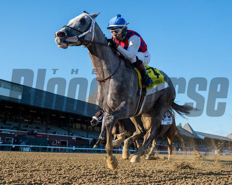 Volatile wins the 2020 Alfred G. Vanderbilt Handicap<br /> Coglianese Photos