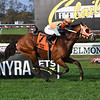 Somelikeithotbrown wins the 2020 Mohawk Stakes at Belmont Park<br /> Coglianese Photos/Susie Raisher