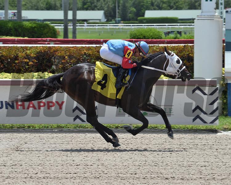 Midnight Traveler - Maiden Win, Gulfstream Park, July 3, 2020<br /> Coglianese Photos/Lauren King