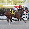 Chance It wins the 2020 Mucho Macho Man Stakes at Gulfstream Park<br /> Coglianese Photos/Lauren King