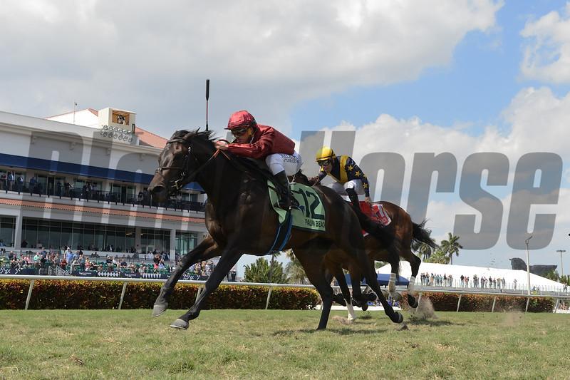 Vitalogy wins 2020 Palm Beach Stakes at Gulfstream Park. Photo: Coglianese Photos