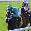 Fire At Will wins the 2020 Pilgrim Stakes at Belmont Park<br /> Coglianese Photos/Chelsea Durand