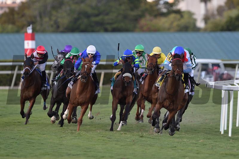 Mean Mary wins 2020 La Prevoyante Stakes at Gulfstream Park. Photo: Coglianese Photos/Tim Sullivan