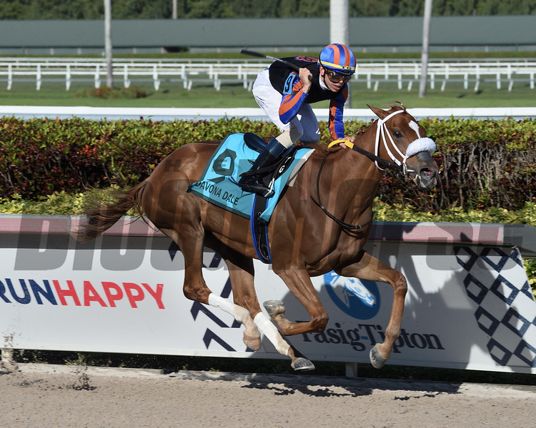 Tonalist's Shape wins the 2020 Davona Dale Stakes at Gulfstream Park<br /> Coglianese Photos/Lauren King