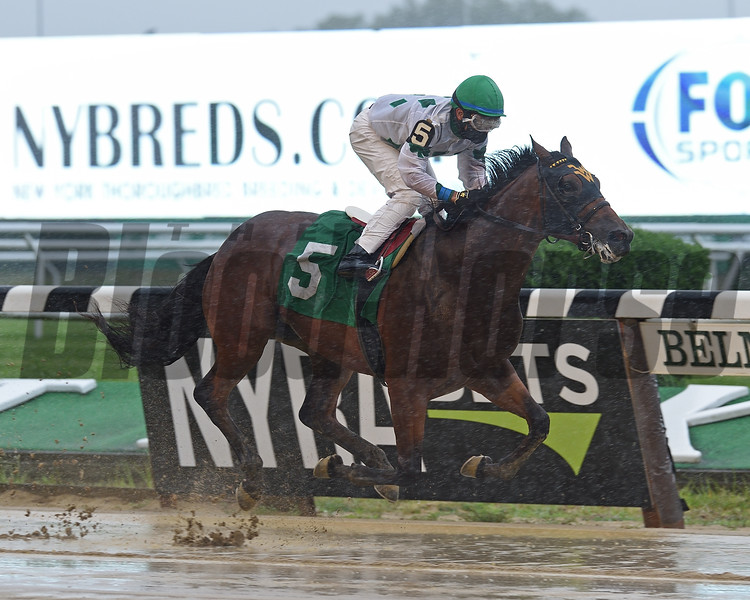 Blame the Booze wins maiden special weight July 10, 2020 at Belmont Park. Photo: Coglianese Photos/Chelsea Durand