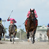 Tax wins the 2020 Harlan's Holiday Stakes at Gulfstream Park<br /> Coglianese Photos/Ryan Thompson