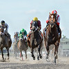Network Effect wins the 2020 Big Drama Stakes at Gulfstream Park<br /> Coglianese Photos/Ryan Thompson