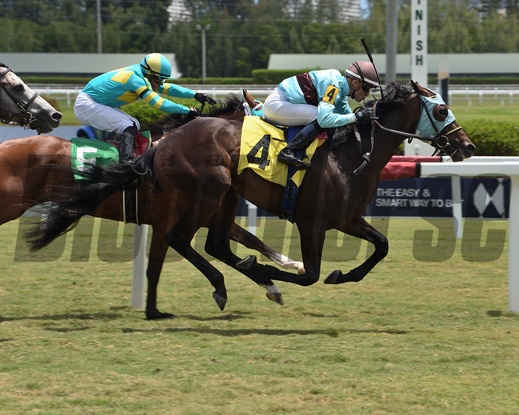 Elusive Ruler - Maiden Win, Gulfstream Park, May 2, 2020       <br /> Coglianese Photos/Lauren King