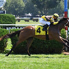 Caldee - Maiden Win, Saratoga, August 23, 2020<br /> Coglianese Photos
