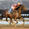 Max Player wins the 2020 Withers Stakes at Aqueduct   <br /> Coglianese Photos/Chelsea Durand
