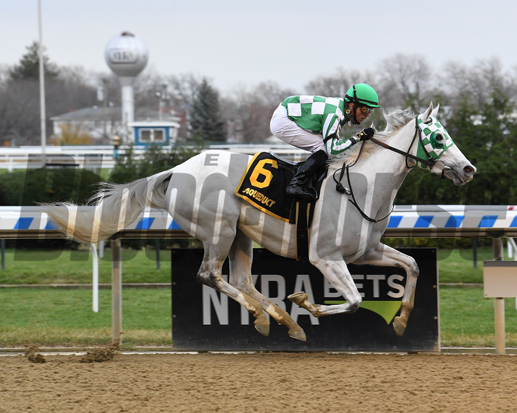 Mrs. Danvers wins the 2020 Comely Stakes at Aqueduct<br /> Coglianese Photos/Susie Raisher