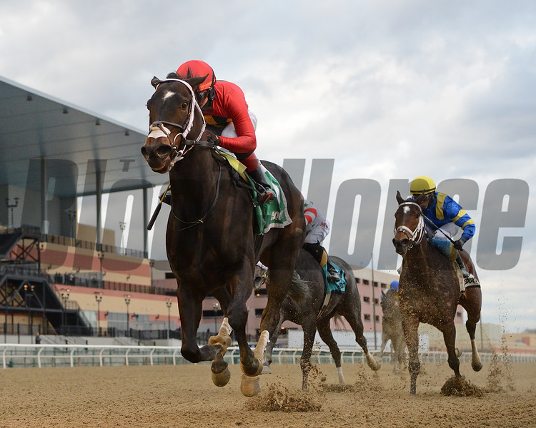 Cruise and Danze wins 2020 Ruthless Stakes at Aqueduct. Photo: Coglianese Photos/Chelsea Durand