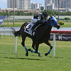 I Am the Boss - Maiden Win, Gulfstream Park, August 13, 2020<br /> Coglianese Photos/Ryan Thompson